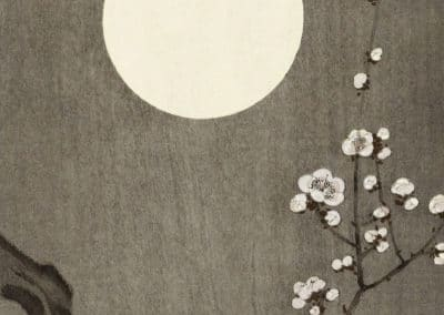 Blooming plum blossom at full moon - Ohara Koson (1901)