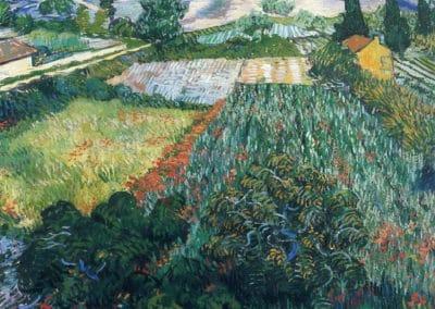 Champs de coquelicots - Vincent van Gogh (1889)
