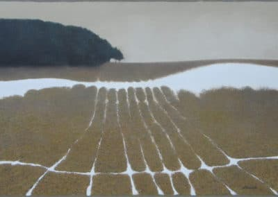 Fields - Alexander Grishkevich (2001)