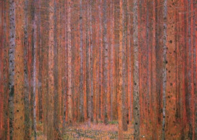 Fir Forest I - Gustav Klimt (1901)