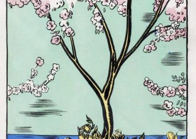 Macao et Cosmage - Edy-Legrand 1917 (23)