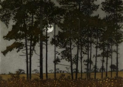 Moonlight - Phil Greenwood (1976)