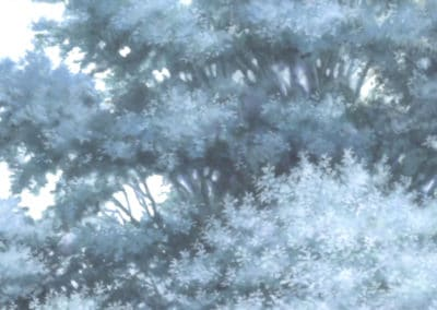 La traversée du temps - Mamoru Hosoda 2007 (26)