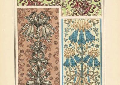 La plante et ses applications ornementales - Eugène Grasset 1898 (10)