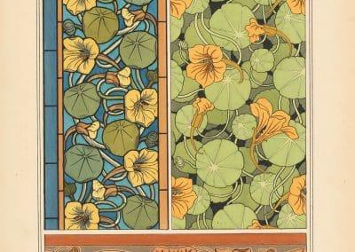 La plante et ses applications ornementales - Eugène Grasset 1898 (24)