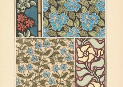 La plante et ses applications ornementales - Eugène Grasset 1898 (36)