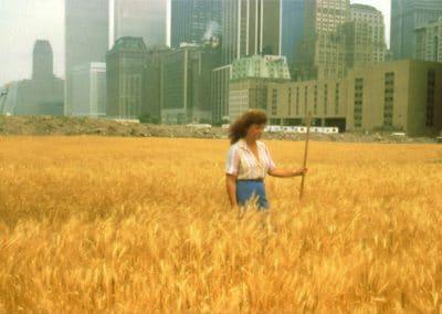 Wheatfield - A confrontation - Agnes Denes 1982 (5)