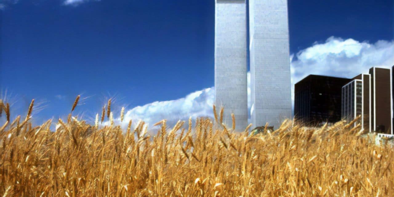 Wheatfield – A confrontation – Agnes Denes