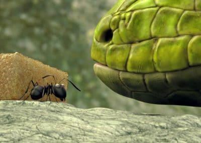 Minuscule, la vallée des fourmis perdues - Thomas Szabo 2013 (13)