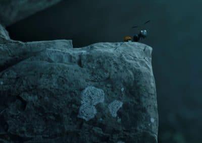 Minuscule, la vallée des fourmis perdues - Thomas Szabo 2013 (19)