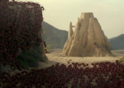 Minuscule, la vallée des fourmis perdues - Thomas Szabo 2013 (25)