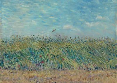 Wheatfield with partridge - Vincent van Gogh (1887)