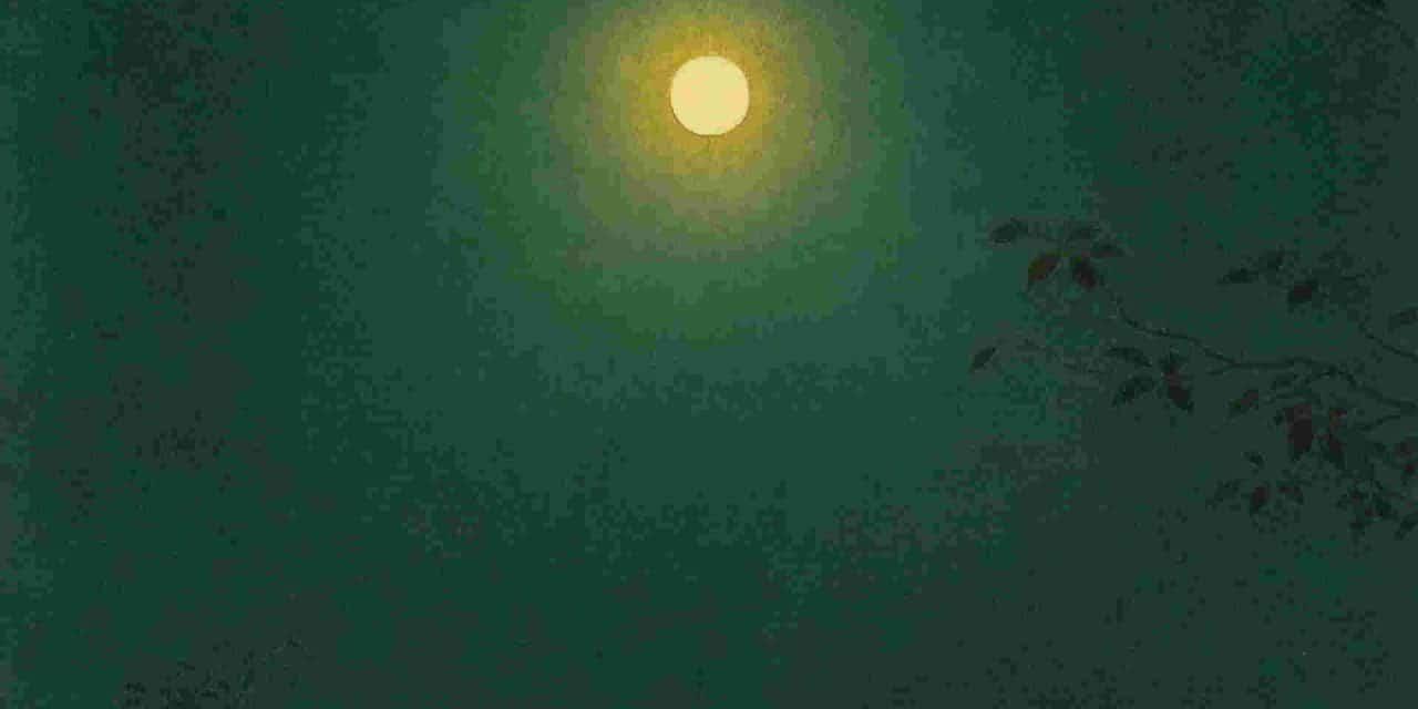 Une étoile solitaire – Guillain Méjane