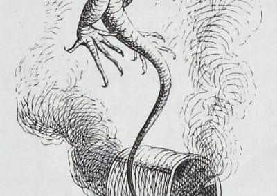 Alice au pays des merveilles - John Tenniel 1865 (13)