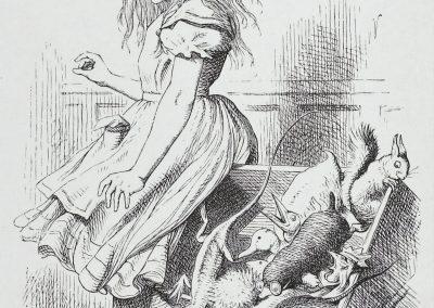Alice au pays des merveilles - John Tenniel 1865 (38)