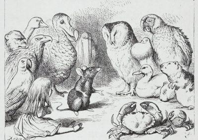 Alice au pays des merveilles - John Tenniel 1865 (9)